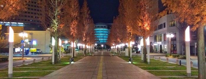 アクト通り is one of 登下校の道.