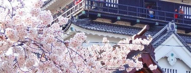 Okazaki Castle is one of ドライブ|お城スタンプラリー.