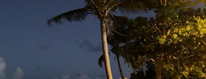 Laguna Grande is one of Puerto Rico.