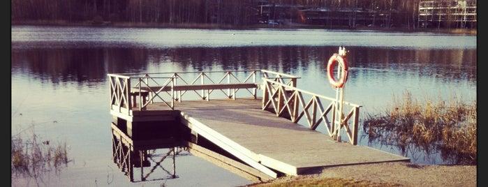 Lammaslammen lenkkipolku is one of Locais curtidos por Louise.