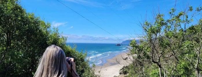 Beach At Arch Cape is one of Lugares favoritos de Alan.