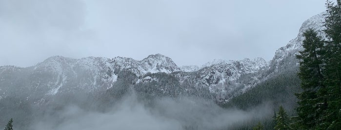 Mount Ellinor is one of Camping/Hiking in Western Washington.