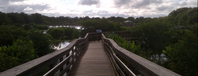Wakodahatchee Wetlands is one of SoFlo spots.