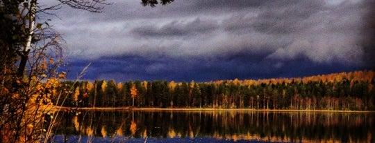 Пасторское озеро is one of Малышка Брюさんの保存済みスポット.