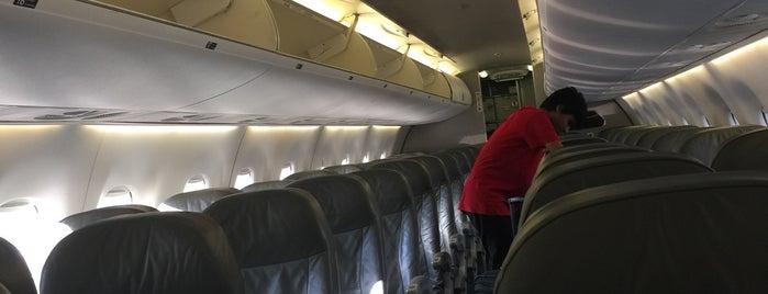 Jet Blue Flight 1106 is one of Flights.