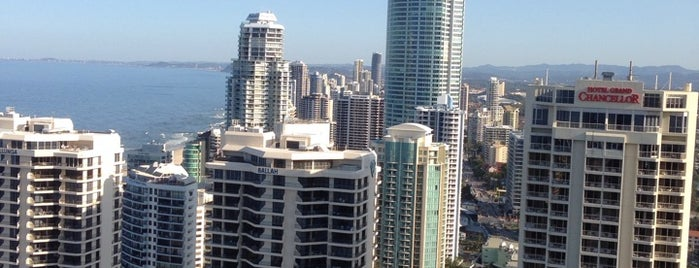 Hilton is one of Gold Coast.