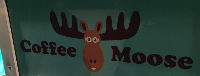 Coffee Moose is one of Съедобные места Серпухова.