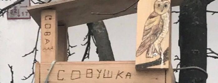 Дупло Совы is one of สถานที่ที่ Ингвар ถูกใจ.