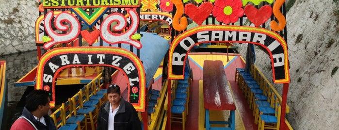 Trajineras Xochimilco is one of Mexico, D.F., 2013.