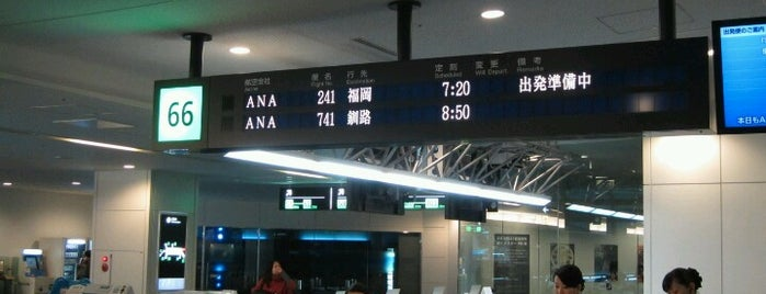 Gate 66 is one of 羽田空港 第2ターミナル 搭乗口 HND terminal2 gate.