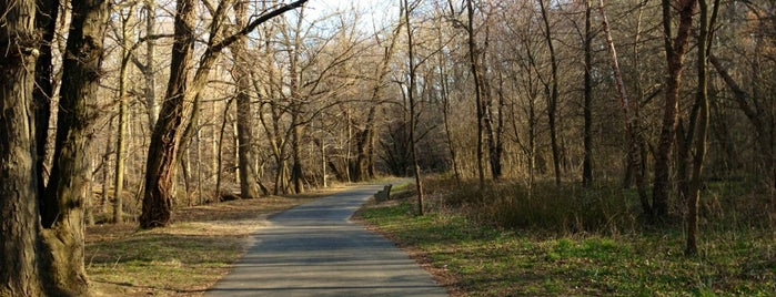 Pennypack Park is one of Philly Parks.