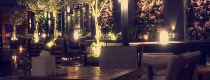 Terrace Cafe is one of Riyadh's Cafés and Restaurants.