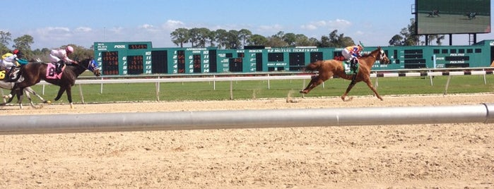 Tampa Bay Downs is one of Time.