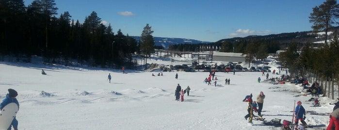Birkebeineren Skistadion is one of Tempat yang Disukai Torstein.