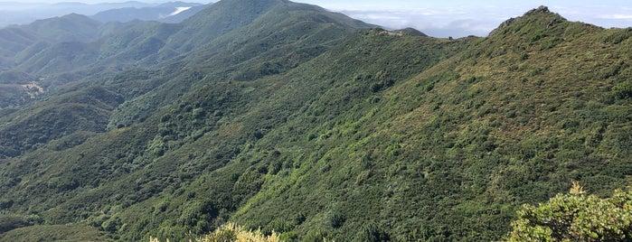 Cerro Alto Peak is one of SLO County Top Spots.
