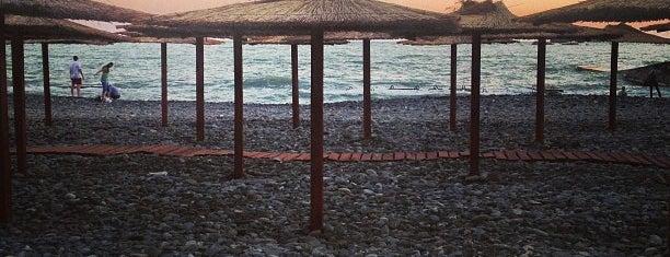 Пляж санатория им. Мориса Тореза is one of Sochi 2014.