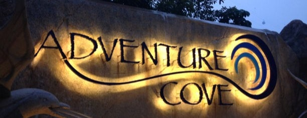 Adventure Cove Waterpark is one of Bucket List 😊.