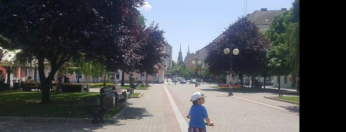 Trg svetog Teodora Vršačkog is one of visit again.