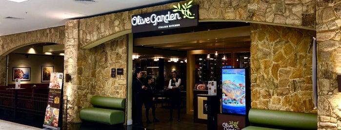Olive Garden is one of Restaurantes.
