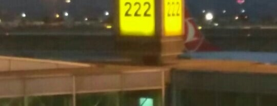 Gate 222 is one of İstanbul Atatürk Airport.