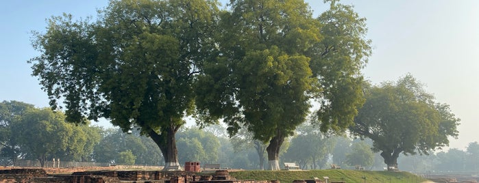 Archeological Site of Sarnath is one of สถานที่ที่ Den ถูกใจ.