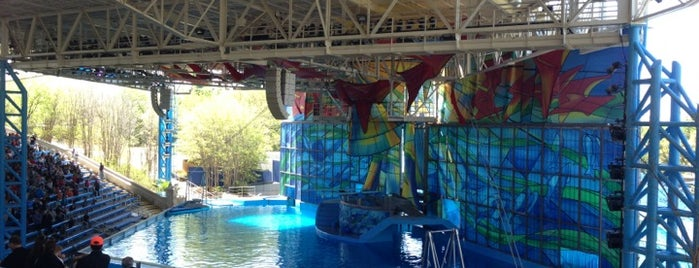 World Of Azul is one of SeaWorld San Antonio.