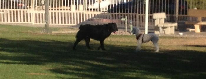 Palm Desert Civic Dog Park is one of Dog Parks.