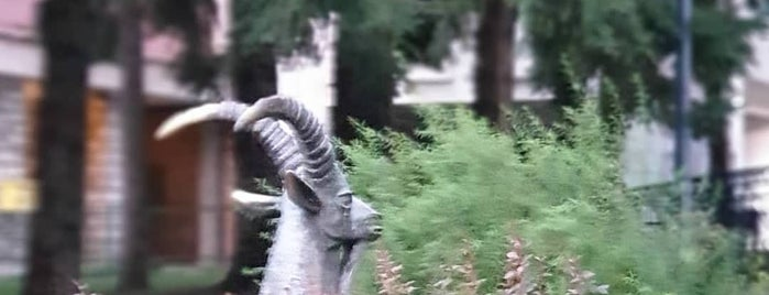 Централен парк разлог (Central Park Razlog) is one of Locais curtidos por Martin.