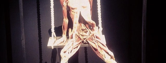 Body Worlds is one of Amsterdam.