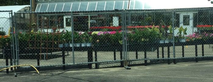 Memorial Florists & Greenhouses is one of Orte, die Brant gefallen.
