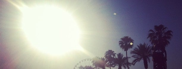 Zia Record Exchange (pop-up store @Coachella) is one of походы за бейджами.