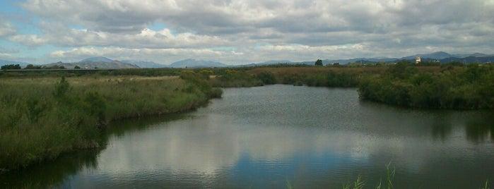 Paraje Natural Desembocadura Del Guadalhorce is one of Qué visitar en Málaga.