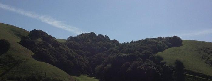 Palomares Hills is one of Lieux qui ont plu à Alan.
