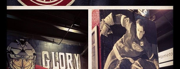 Joe Louis Arena is one of US Pro Sports Stadiums - ALL.