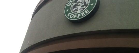 Starbucks is one of Posti che sono piaciuti a Cristina.