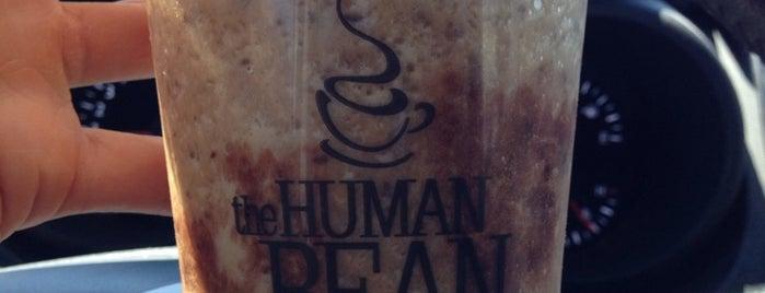 The Human Bean is one of Tan : понравившиеся места.