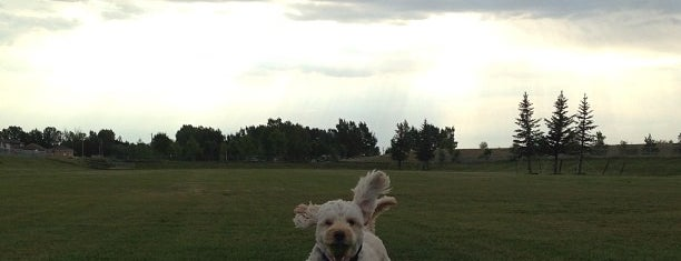 Coaldale Dog Park is one of Dog Parks.