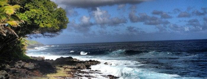 Kalani Oceanside Retreat is one of Orte, die Byrdie gefallen.