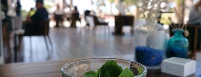 Cove Beach is one of دبي.