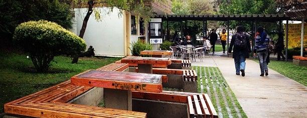 Campus Sausalito PUCV is one of สถานที่ที่ Natalia ถูกใจ.