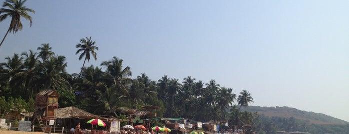 Goa is one of Meskenler.