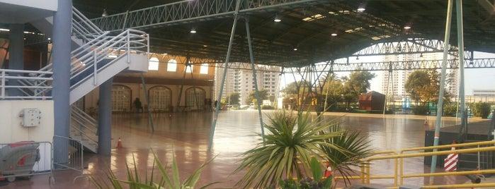 Gym Complejo Minera Escondida. is one of Miguel : понравившиеся места.