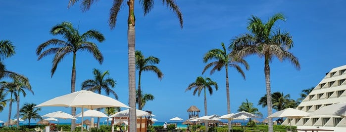 Hyatt Ziva Cancun is one of Catherineさんのお気に入りスポット.
