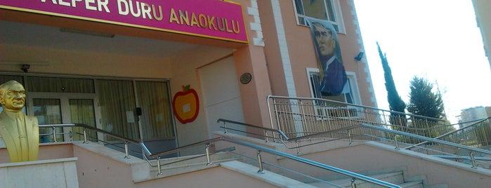Alper Duru Anaokulu is one of Locais curtidos por Gülşah.