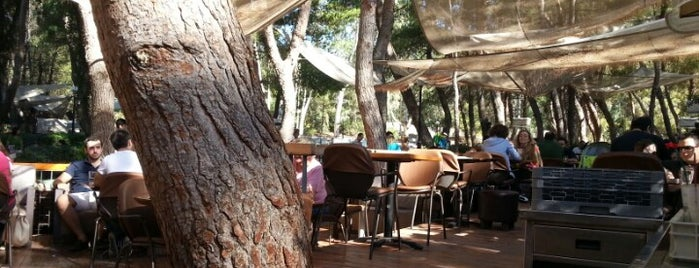 Piu Verde is one of A local's guide: 48 hours in Athens.