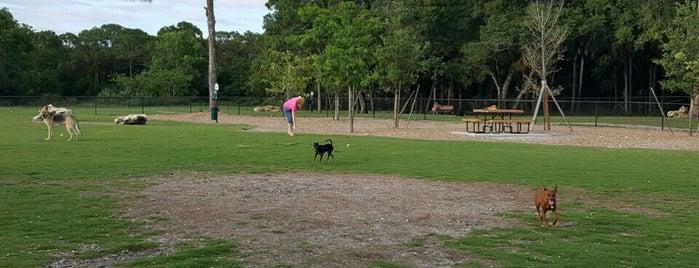 Bonita Springs Dog Park is one of Jeff'in Beğendiği Mekanlar.