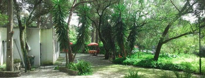 Restaurante Monteverde is one of Portuga!.