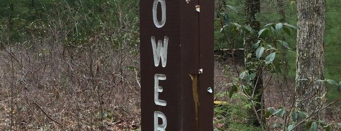 Lower Trail - Alfarata Trail Head is one of Posti che sono piaciuti a ed.