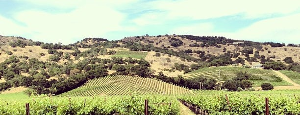 Chimney Rock Winery is one of Napa Valley Favorites.