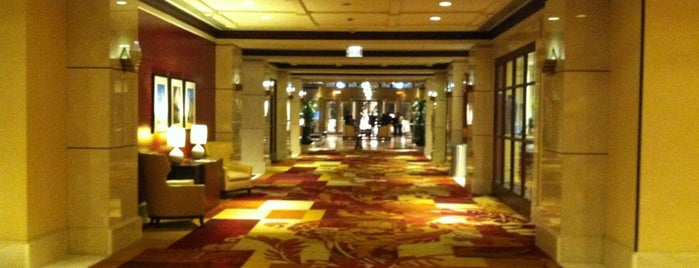 Cleveland Marriott Downtown at Key Center is one of My favorite hotels.
